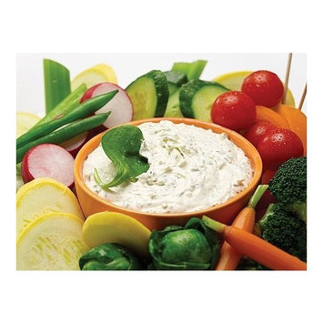Homemade Gourmet It's The Real Dill Dip Mix - Double Pack