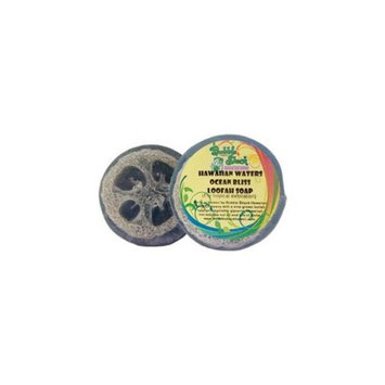 Bubble Shack Hawaii 689076052788 Hawaiian Waters Loofah Soap - Pack of 2