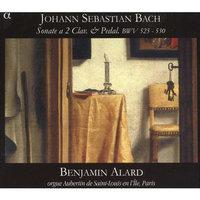 Johann Sebastian Bach: Sonate a 2 Clav.