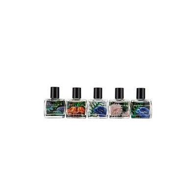 NEST Fragrances 5-piece Eau de Parfum Starter Kit