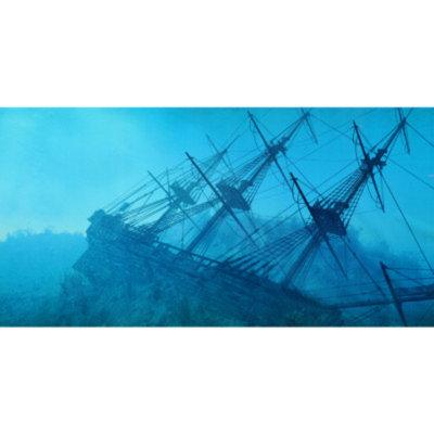 Top Fin Shipwreck Aquarium Cling