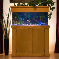 Advance Aqua Tanks Uniquarium Rectangular Aquarium Black, Size: 300-Gal (96W x 24D x 30H in.)