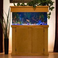 Advance Aqua Tanks Uniquarium Rectangular Aquarium Black, Size: 125-Gal (60W x 18D x 24H in.)