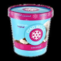 Ciao Bella Coconut Sorbet