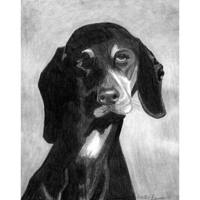 Olde Time Mercantile Black Forest Hound Dog Portrait Matted Art Print - 5 in x 7 in Design - 8 in x 10 in Matted
