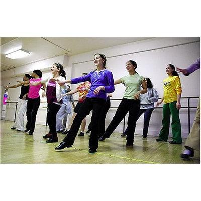 Dinosaur Bar-b-que Dance Studio Complete Start Up Business Plan NEW 2008!