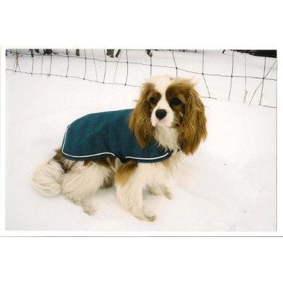 EOUS Waterproof Dog Rainsheet Medium Juniper Herringbone