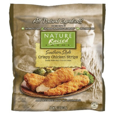 Tyson Nature Raised Farms Southern Style Chicken Strips 12 oz