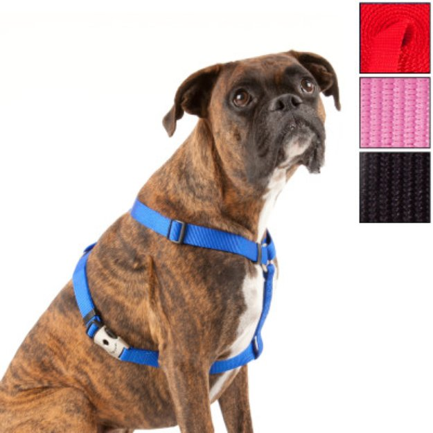 Top Paw Signature Dog Harness