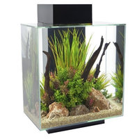 Hagen Fluval Edge Aquarium with LED Light, White