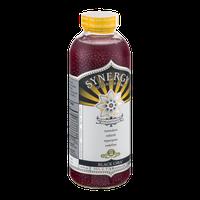 GT's Raw Organic Kombucha Black Chia