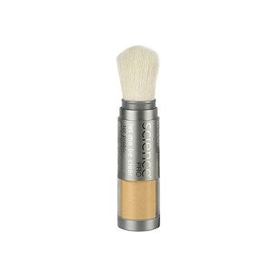 Colorescience Problem Skin Finishing Powder Brush