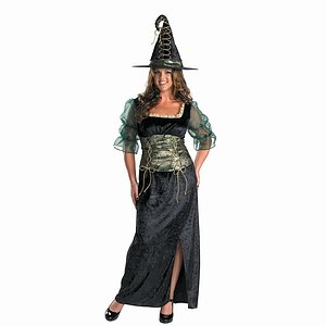 BuySeasons Costumes Emerald Witch Adult Costume