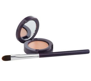 tarte Dark Circle Defense Natural Under Eye Corrector