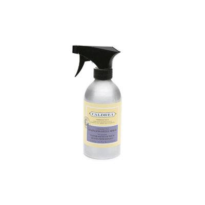 Caldrea Stainless Steel Spray