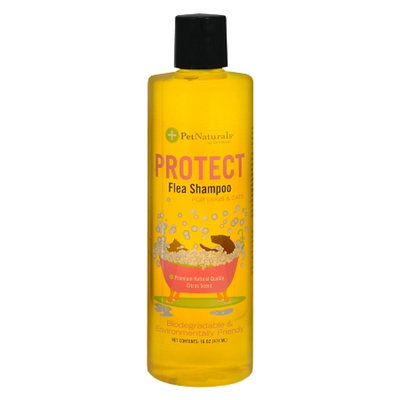Pet Naturals Protect Flea Shampoo for Dogs & Cats