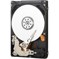 WD AV-25 320 GB Internal Hard Drive for Video Storage - 24/7 Reliability - 2.5