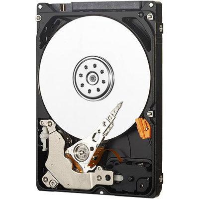 WD AV-25 320 GB Internal Hard Drive for Video Storage - 24/7 Reliability - 2.5