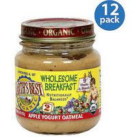 Earth's Best Wholesome Breakfast Apple Yogurt Oatmeal