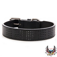 Bret Michaels Pets RockTM Perforated Dog Collar