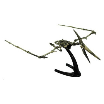 Geo World CL124K Dino Excavation Kit Pteranodon Skeleton