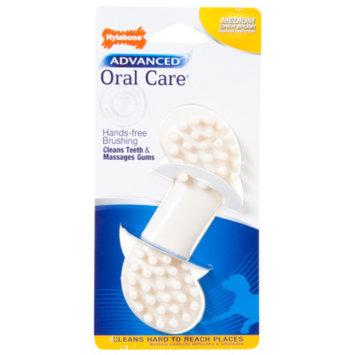 Nylabone Advanced Oral Care Dog Chew Brush