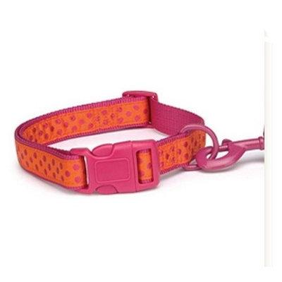 Zack & Zoey Brite Polka Dot Pet Collar - Raspberry