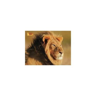 Uncle Milton NGW Jigsaw Puzzle Asst 100 pc African Lion