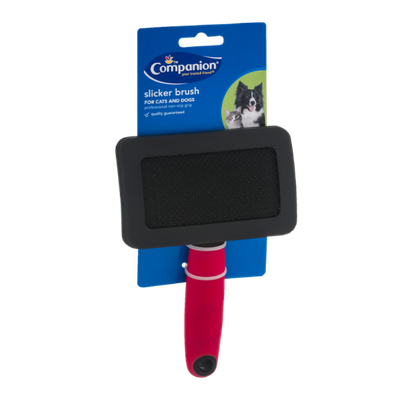 Companion Slicker Brush for Cats and Dogs