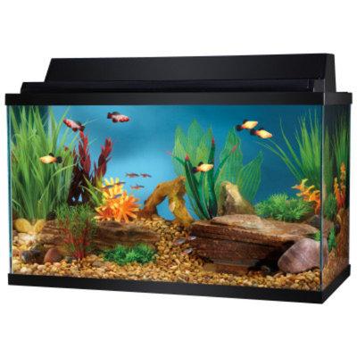 Top Fin 10 Gallon Aquarium Starter Kit