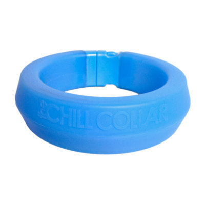 All Four Paws Chill Dog Collar