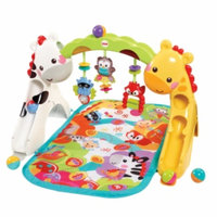Fisher-Price Newborn-to-Toddler Play Gym.