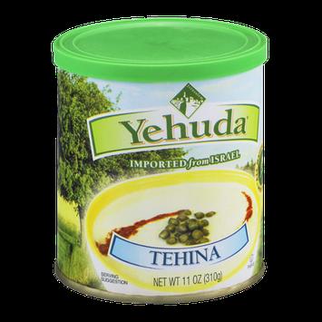 Yehuda Tehina