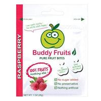Buddy Fruits, Frt Bites, Raspberry, 18/1 Oz