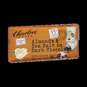 Chocolove Almonds & Sea Salt in Dark Chocolate