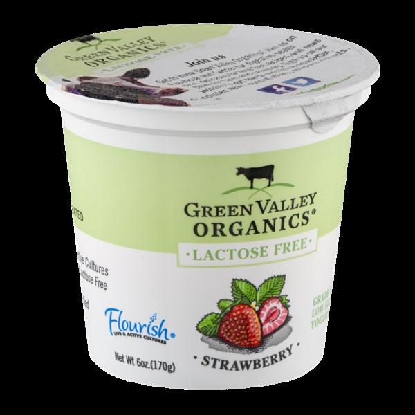 Green Valley Organics Lactose Free Low Fat Yogurt Strawberry