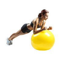 Weider Health & Fitness Weider 55cm Stability Ball - WEIDER HEALTH AND FITNESS
