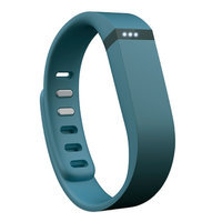 Fitbit Flex Wireless Activity + Sleep Tracker, Slate, 1 ea