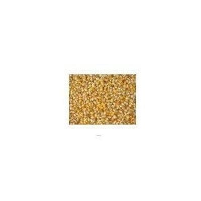 Bulk Grains, 100% Organic Multi Colored Popping Corn, Bulk, 25 Lbs ( Multi-Pack)
