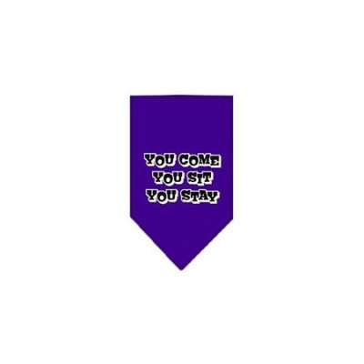 Ahi You Come You Sit You Stay Screen Print Bandana Purple Small