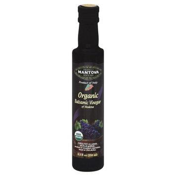 Mantova Vinegar Balsamic 8.5 Fo -Pack of 6