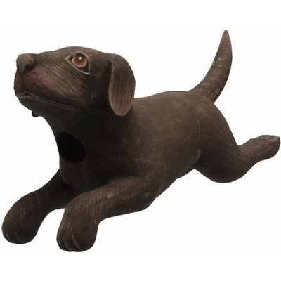 Songbird Essentials Leaping Black LAB Birdhouse