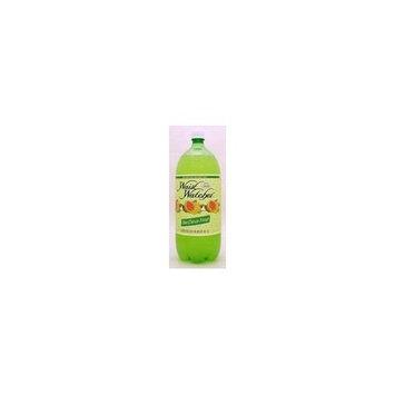 Waist Watcher Citrus Frost Soda (Case of 8)