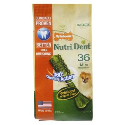 NutriDent Nylabone Mini Chews 36ct