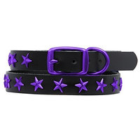 Platinum Pets Genuine LC15INPURSTR Leather Dog Collar with Spikes, Electric Purple
