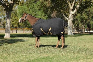 Kensington Protective Products Kensington Medium Weight Turnout Blanket - Pony