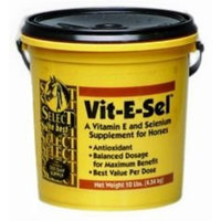 Richdel Inc Select-the-best Vit-e-sel Powder for Horses - 10 lbs