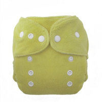 Thirsties Duo Fab Fitted Snap Cloth Diapers, Honeydew, Size Two (18-40 lbs)