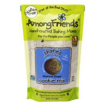 Among Friends Cookie Mix, Shane's Sweet-N-Spicy Molasses Ginger, 12 oz