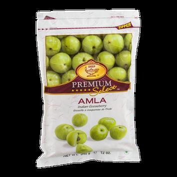 Deep Premium Select Amla Indian Gooseberry